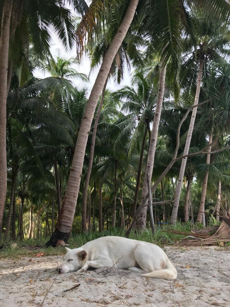 mahilamonen-beach-palawan