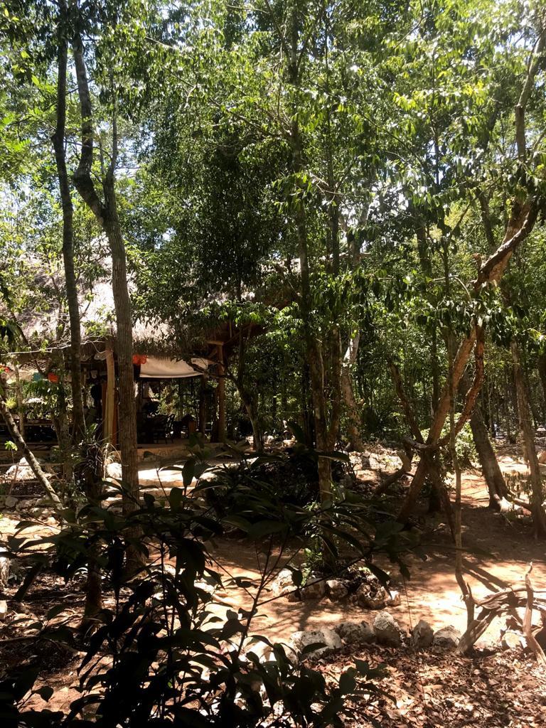 casa-aztlan-cobá-quintana-roo-messico