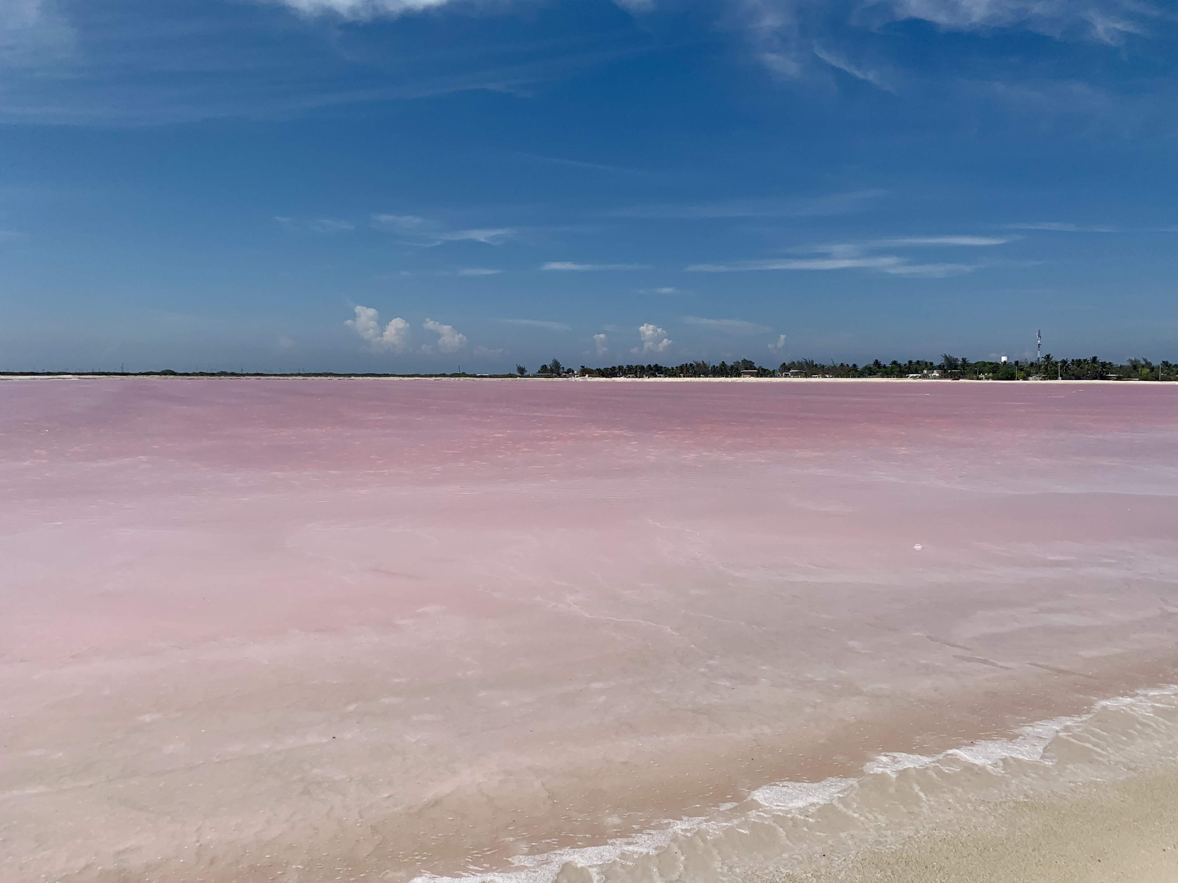 laguna-rosa-las-coloradas-yucatán-messico