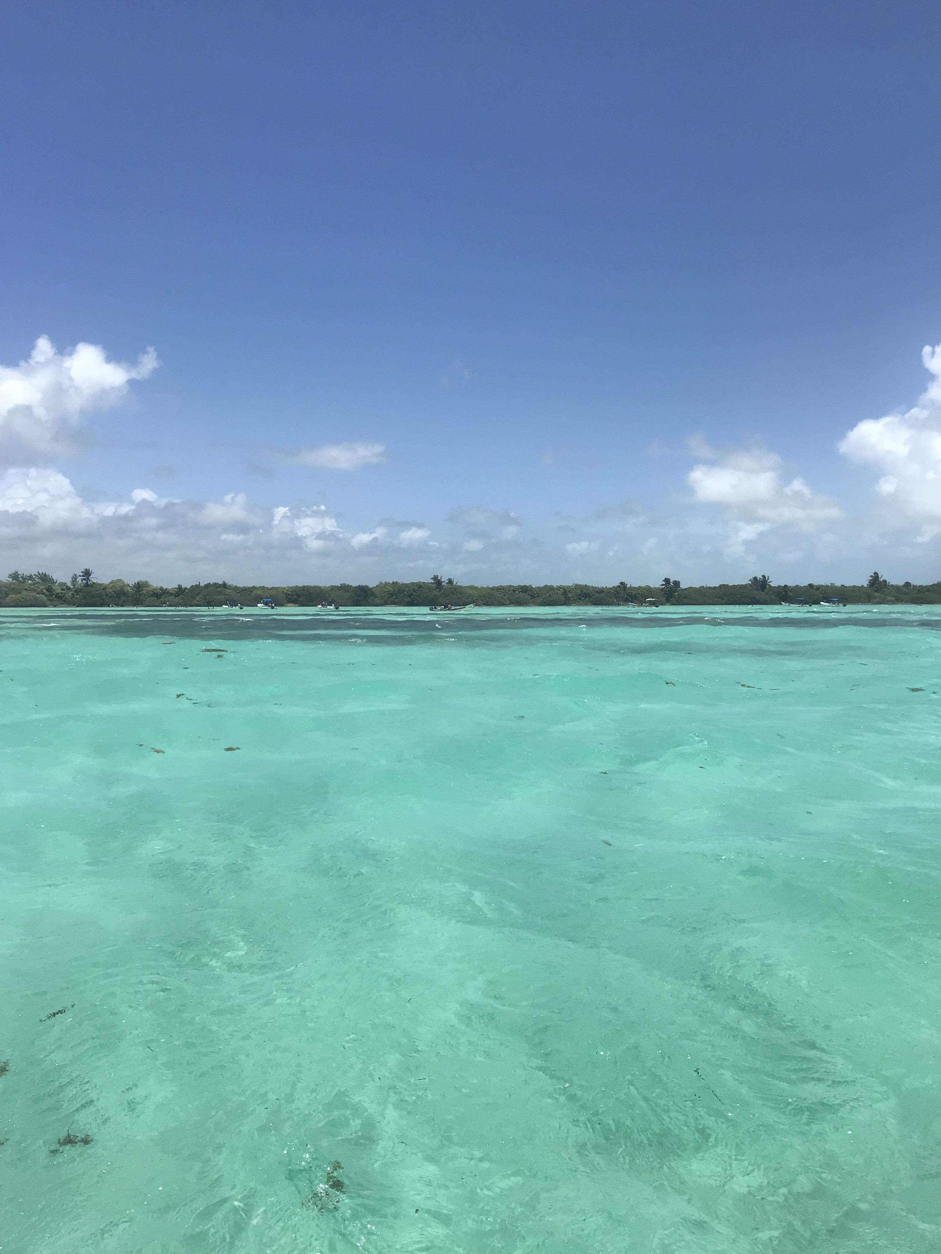 piscina-naturale-riserva-sian-kaan-quintana-roo-messico