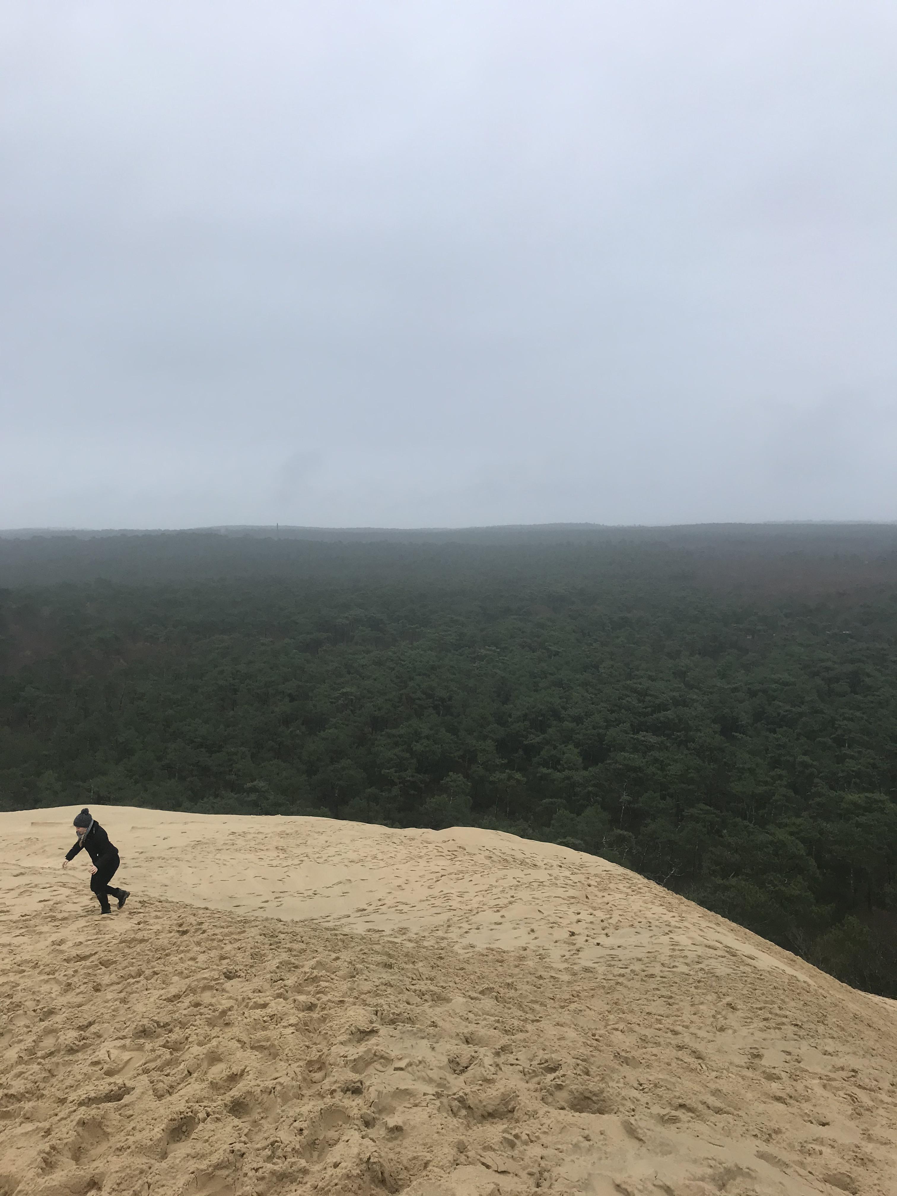duna-di-pilat-paesaggio-circostante