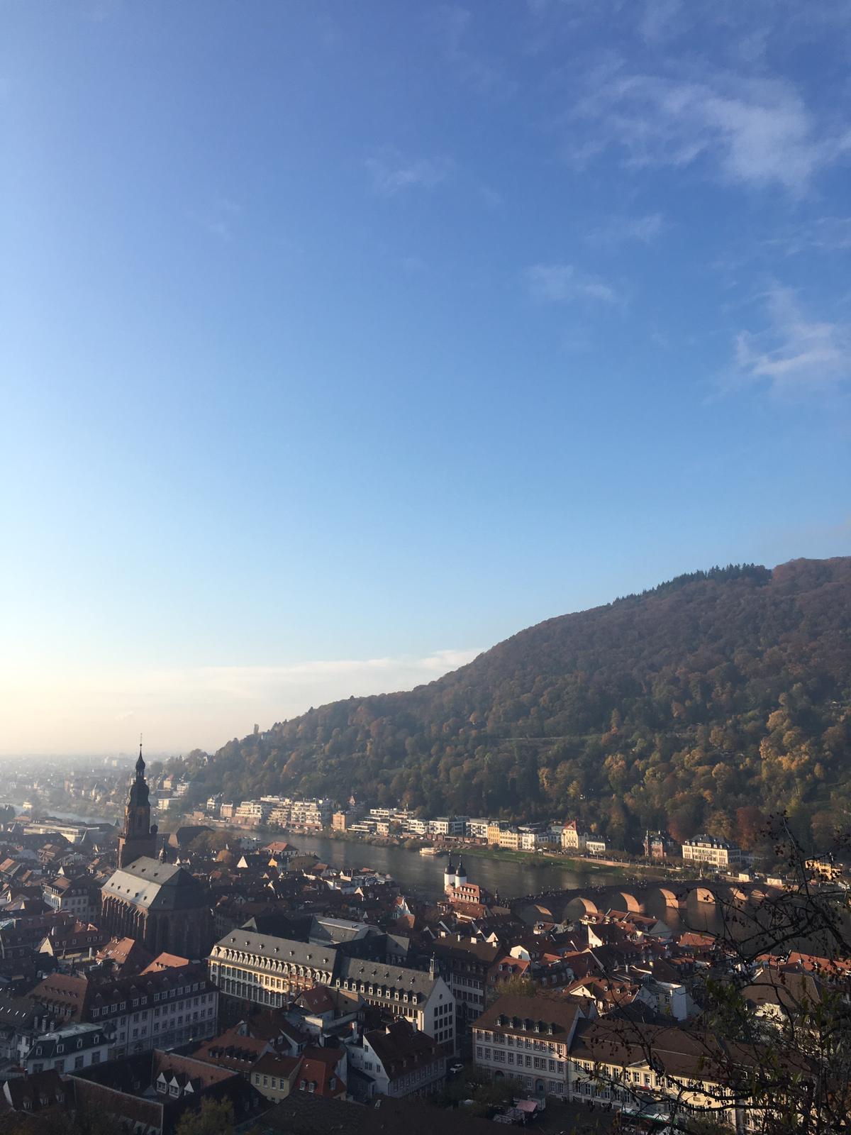 vista-terrazza-panoramica-castello-heidelberg