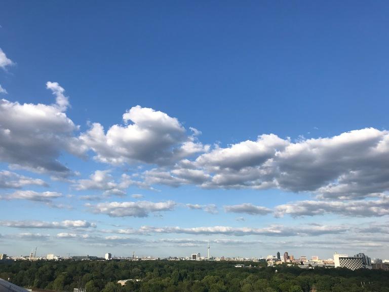 vista-tiergarten-berlino