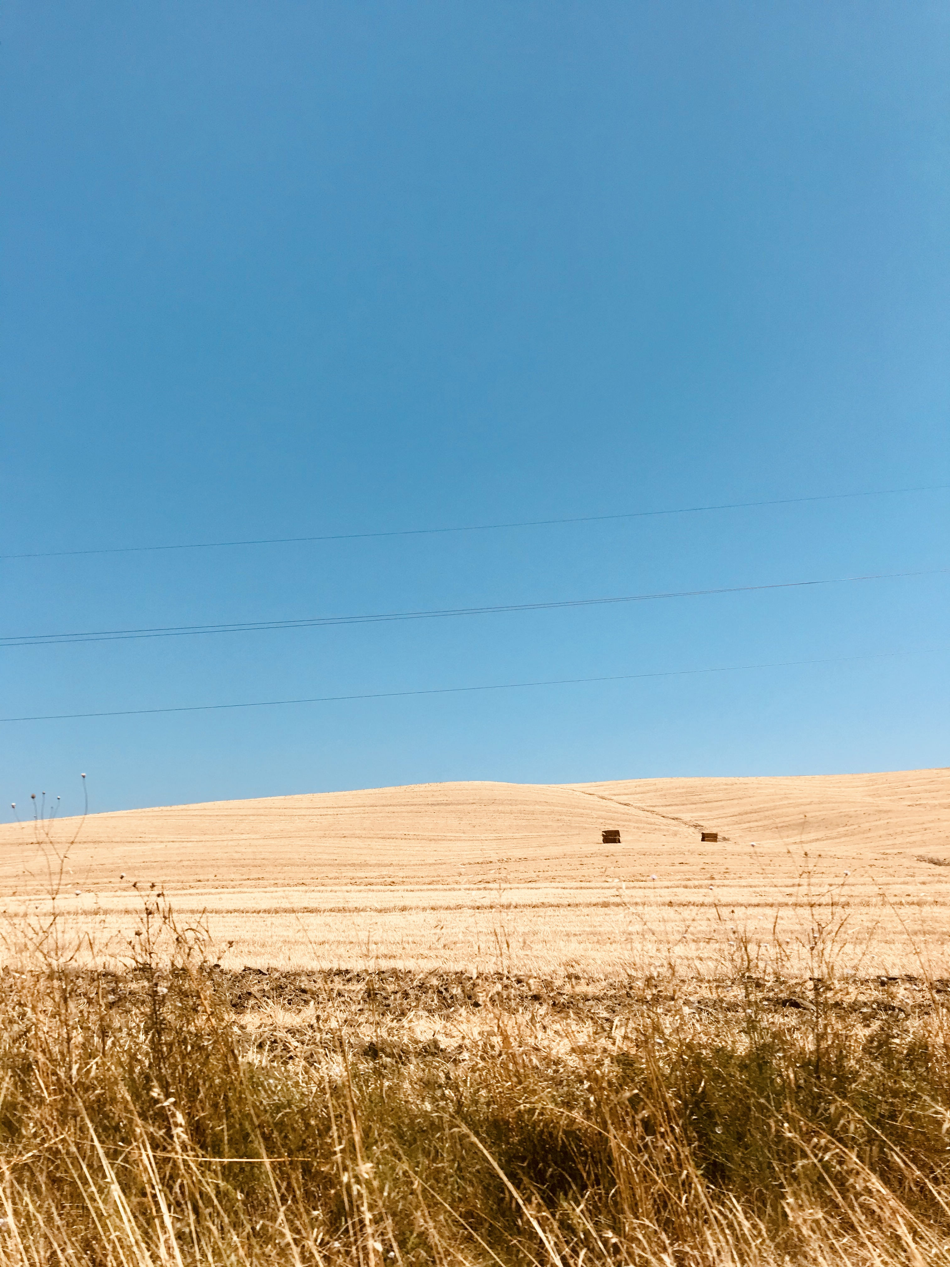 fotografie-campagna-toscana