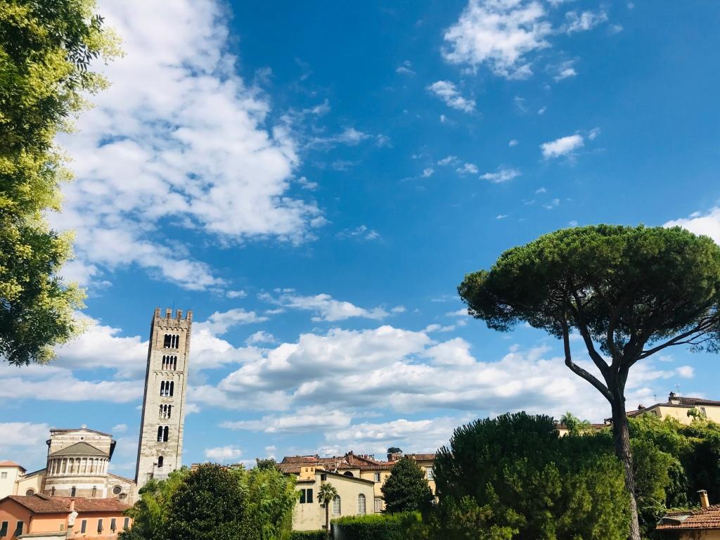 Vista sulla città dalle mura - Lucca, Toscana, Italia