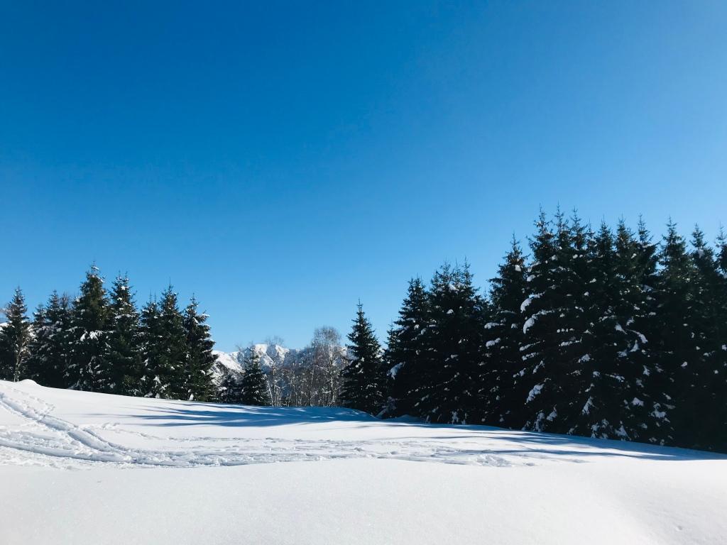 Paesaggi indimenticali si incontrano lungo il sentiero per Monterecchio - Val Veddasca, Lombardia, Italia
