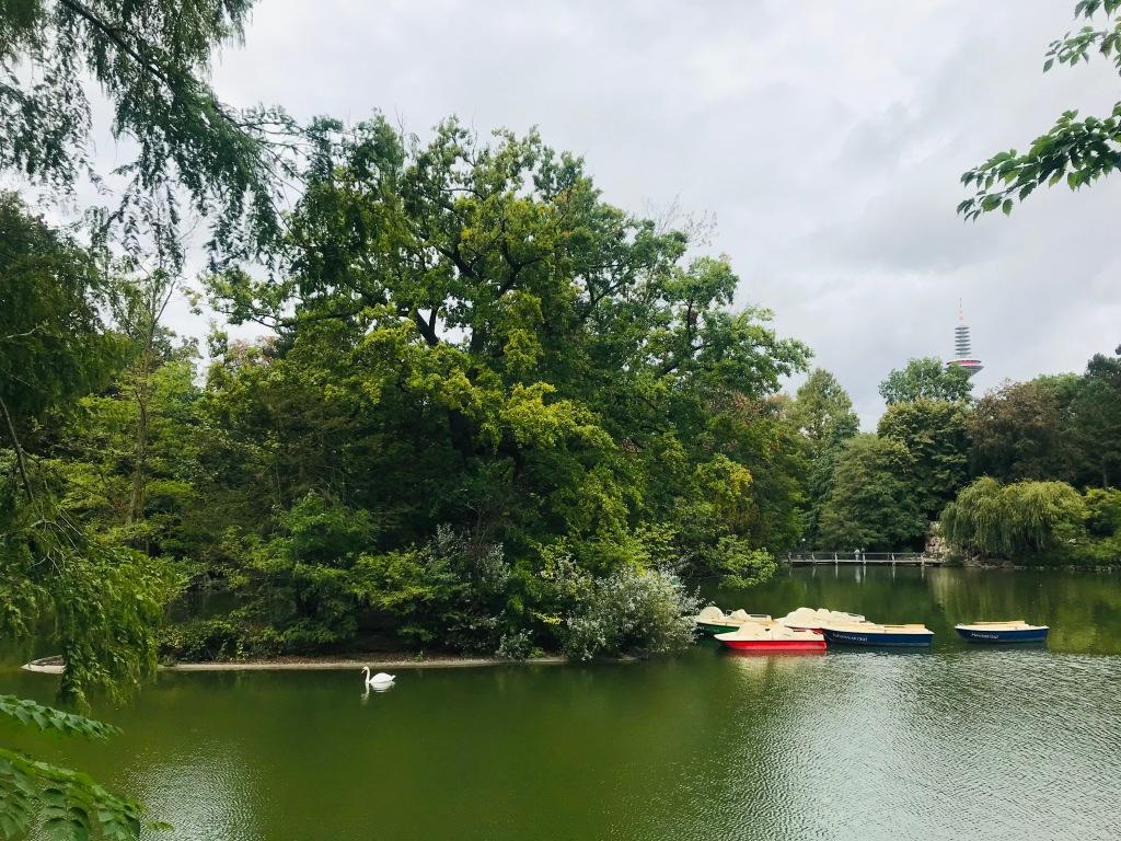 Il bel parco del Palmengarten - Francoforte, Hessen, Germania