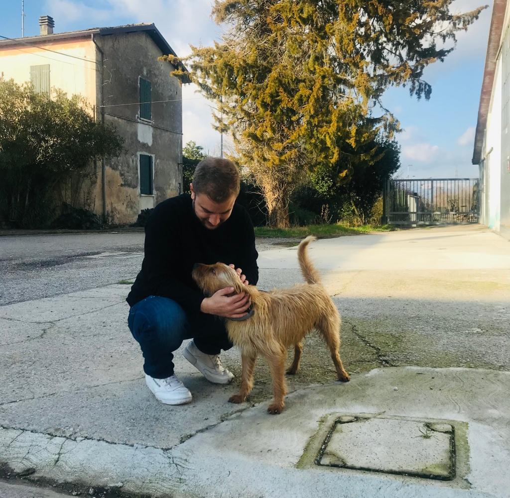 Johannes gioca con il cagnolino dell'Agriturismo Locustione - Desenzano del Garda, Lombardia, Italia