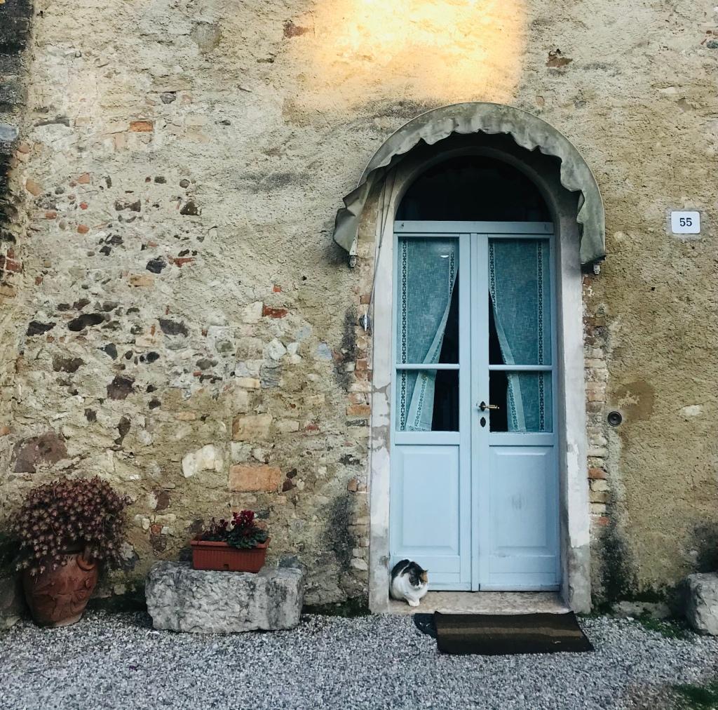 Gatto nel borgo - Castellaro Agusello, Lombardia, Italia