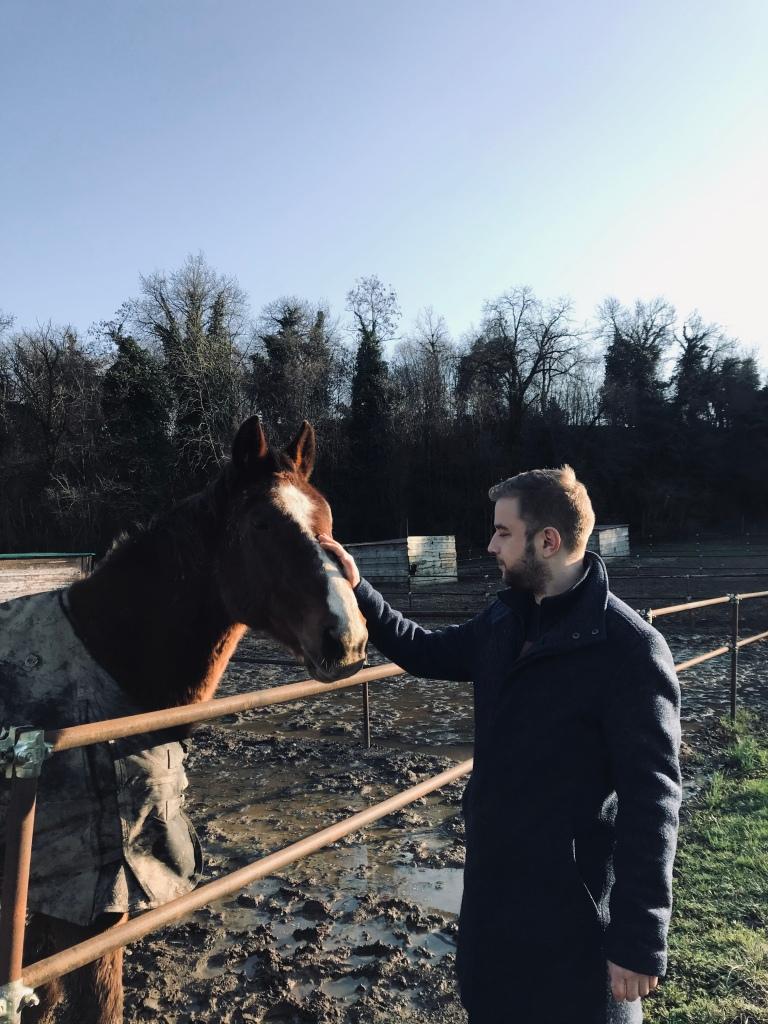 Carezze a un cavallo alla scuderia Borgo Le Coccole - Volta Mantovana, Lombardia, Italia