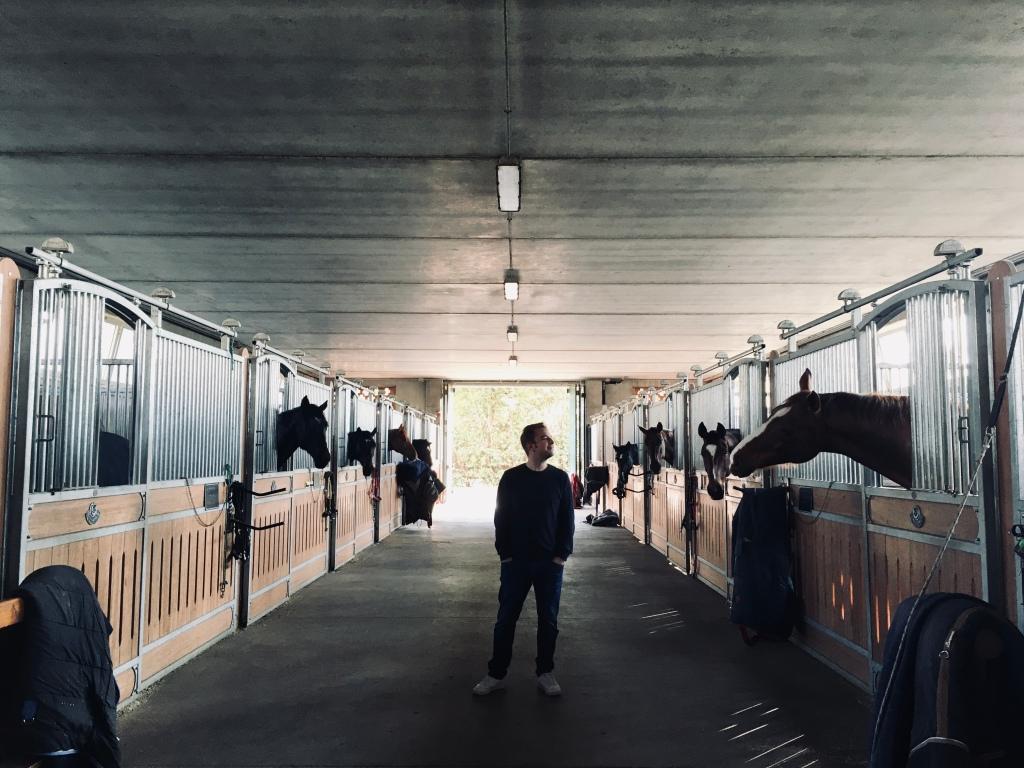 Scuderie dai bellissimi cavalli - Borgo di Mustonate, Varese, Italia